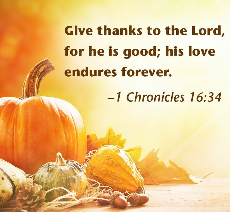 Bible Verses Concerning Gratitude And Thanksgiving